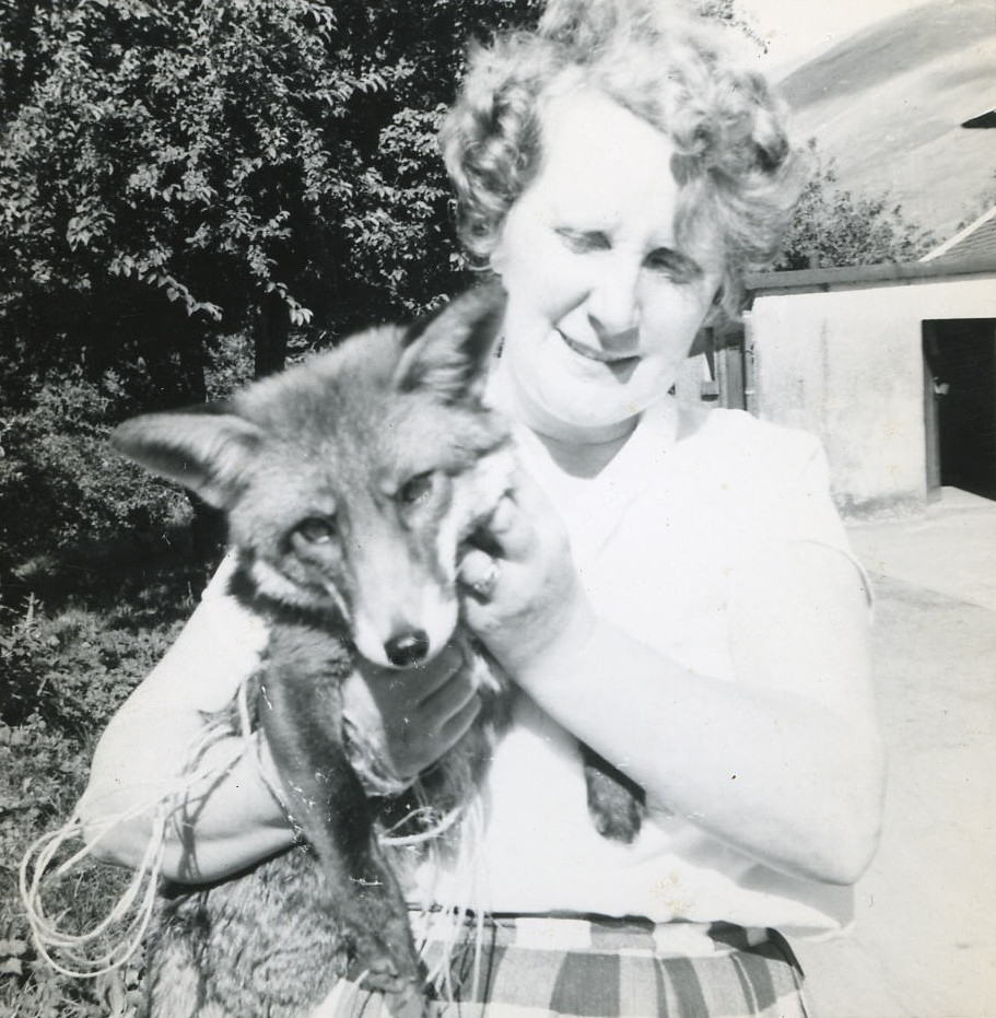 Betty Manson with Susie the fox