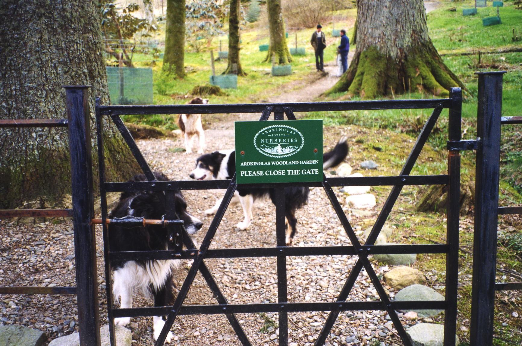 Ardkinglas Woodland Gardens