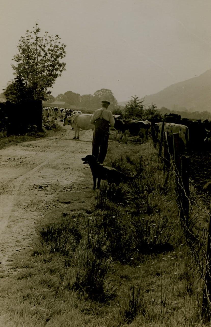 Achadunan Farm