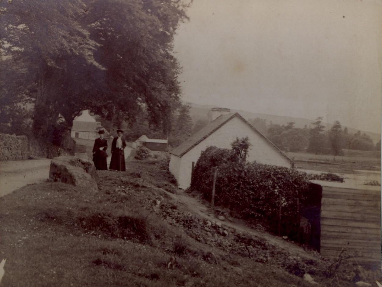 Canary Cottage/Shore Cottage