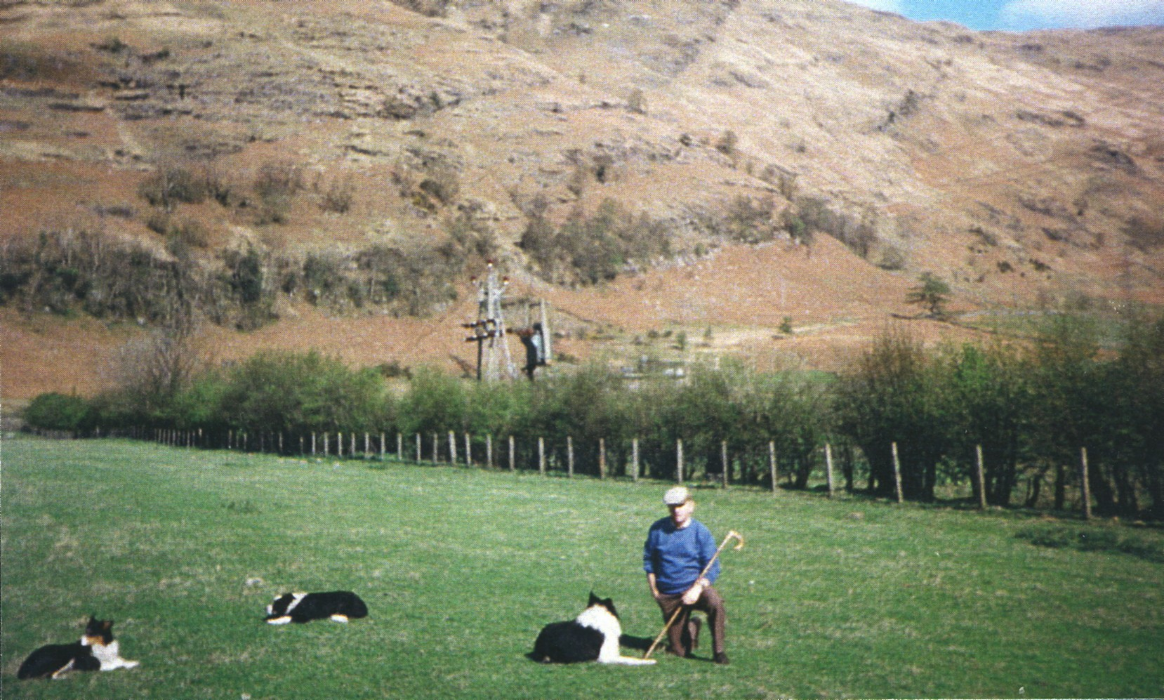 Roddy MacDiarmid with dogs