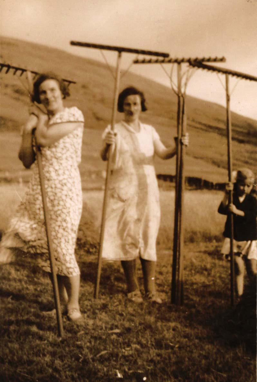 Haymaking at Glaschoine