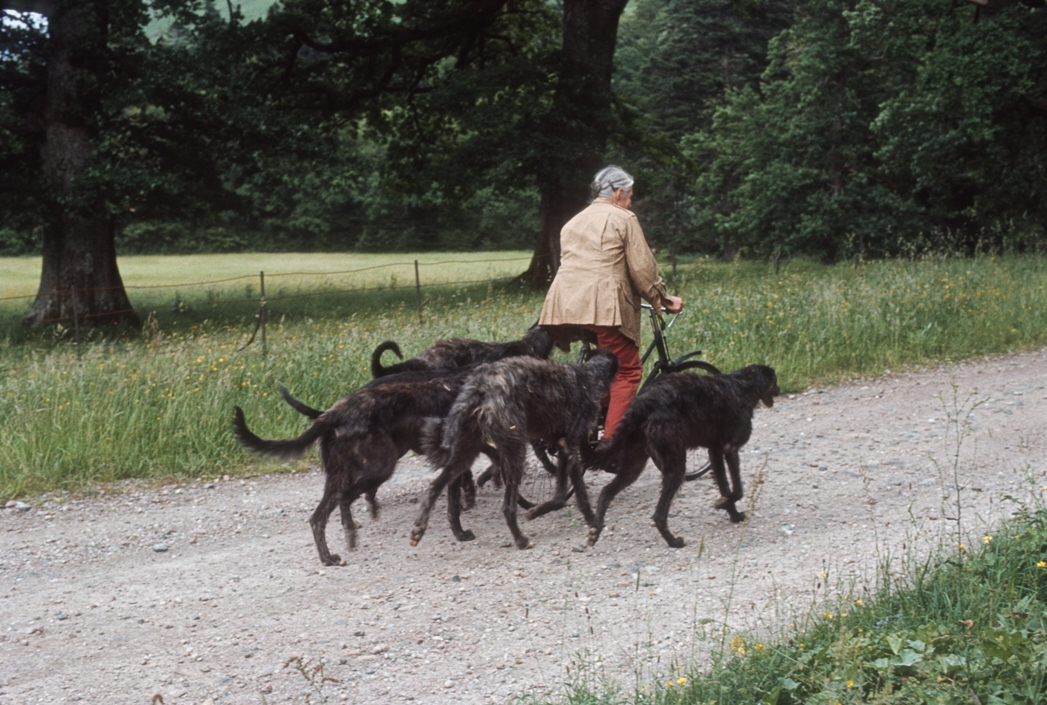Anastasia Noble with deerhounds