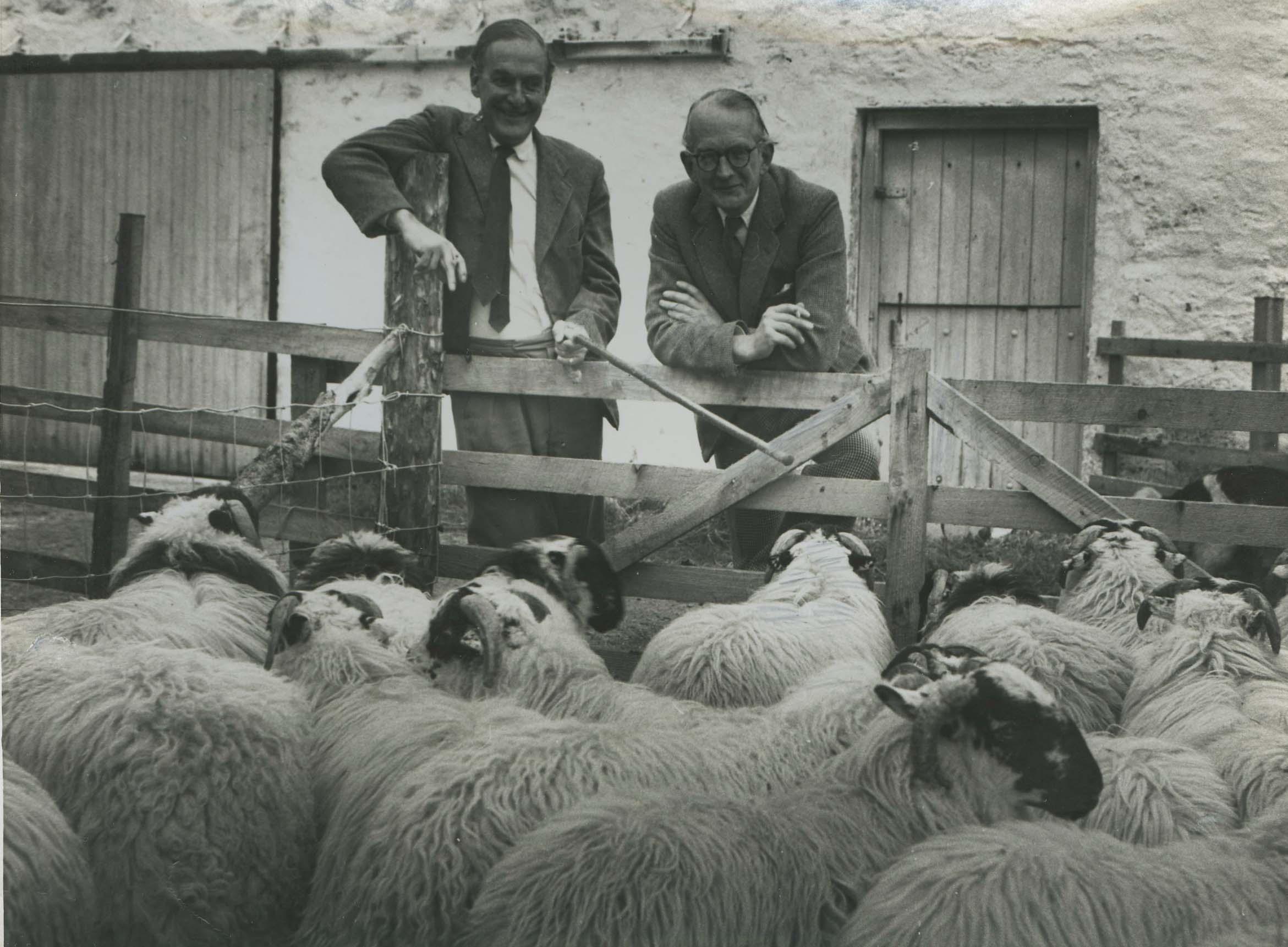 Clachan Farm